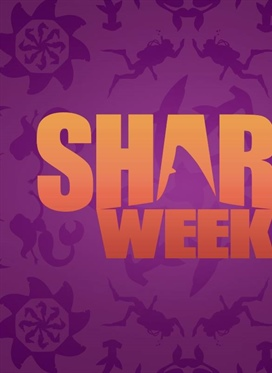 Countdown to Shark Week on Discovery
